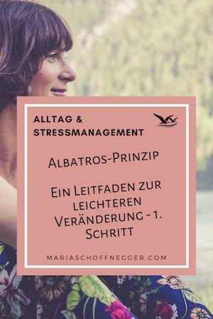 Albatros-Prinzip: Ein Leitfaden zur leichteren Veränderung 1. Schritt