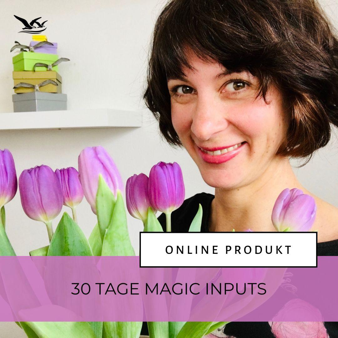 Online Produkt: 30 Tage Magic Inputs