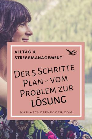 Der 5 Schritte Plan: das ALBATROS-PRINZIP vom Problem zur Lösung